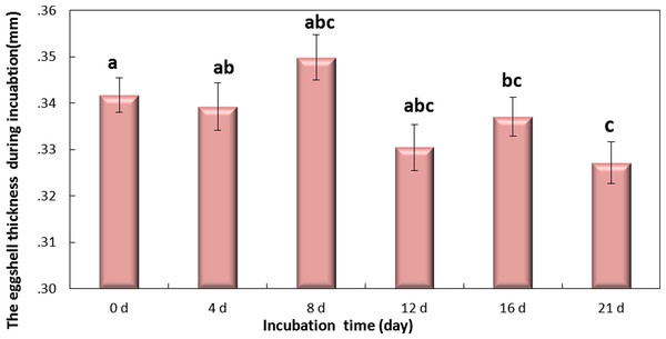 The thickness of eggshell on days 0, 4, 8, 12,16 and 21 during the incubation.