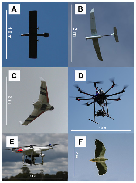 Examples of UAV models with different wing profiles.