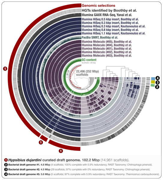 Holistic assessment of the tardigrade genome assembly from Boothby et al. (2015).
