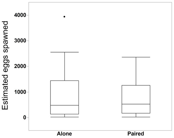 Estimated number of eggs in bowls of individuals that spawned alone (N = 30 bowls) and in pairs (N = 25 bowls).