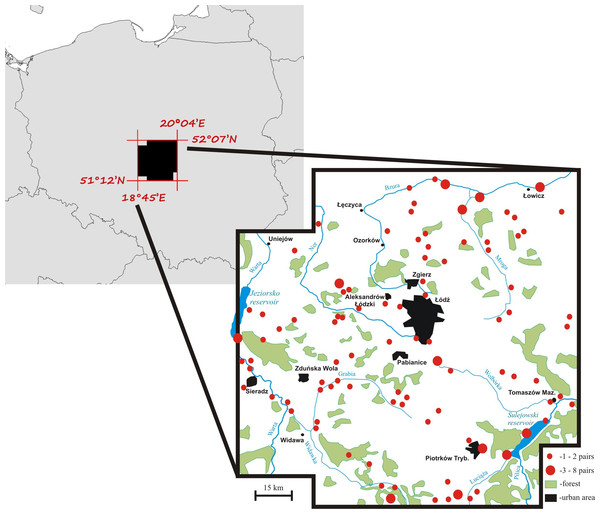 A map of the mute swan breeding territories within the study area, central Poland.
