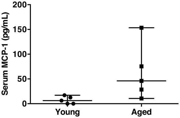 Serum MCP-1 distribution of aged and young mice.