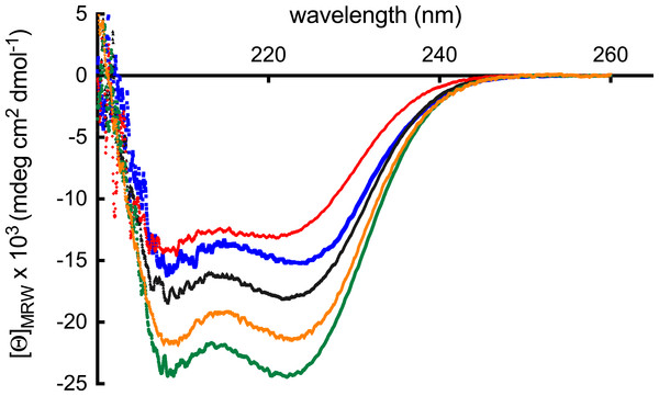Far-UV CD spectra.