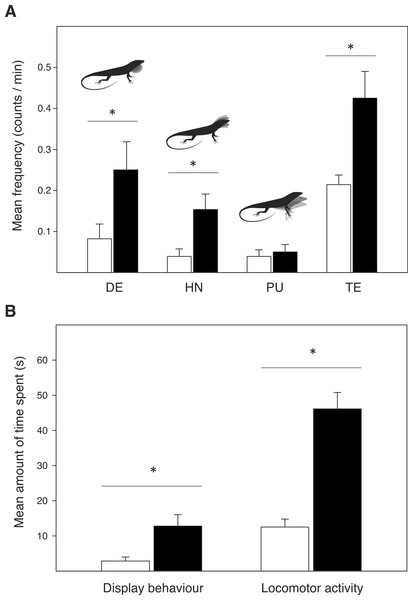Display behaviour and exploratory activity in male Anolis sagrei when introduced in an untreated control terrarium (white bars) and an experimental terrarium previously inhabited by conspecific females (black bars).