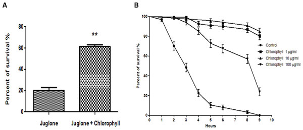 Effect of chlorophyll on reducing juglone-induced stress.