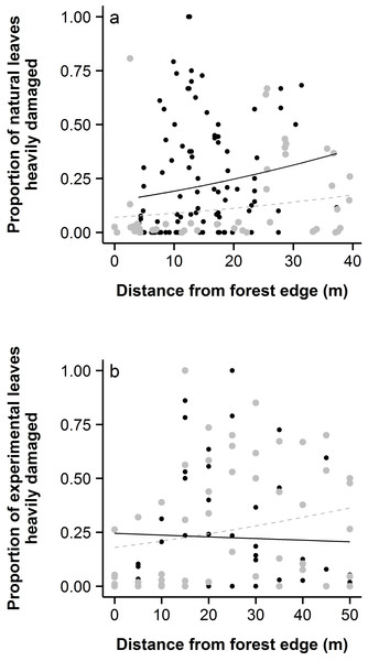 Distance from forest edge altered patterns of beetle damage in both (A) natural populations and (B) the transect experiment.