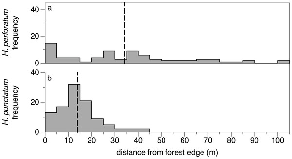 Natural distribution of exotic H. perforatum (A) and native H. punctatum (B) in the field.