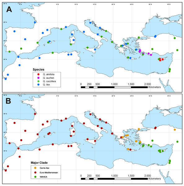 Plastid haplotype variation in Mediterranean members of Quercus Group Ilex.