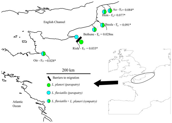 Map of sampling sites across the channel area.
