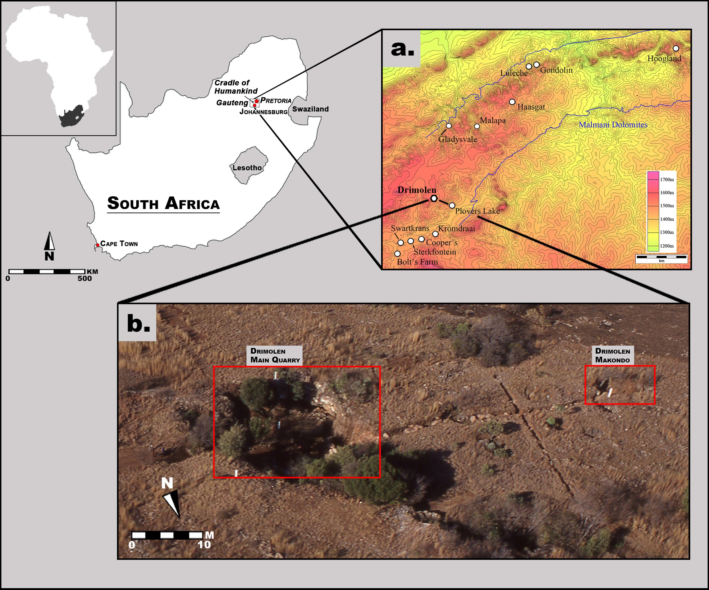 macromammalian faunas, biochronology and palaeoecology of the earlydownload full size image