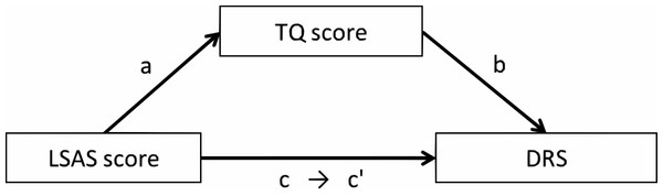 The mediation model among the LSAS score, the TQ score, and the DRS in Experiments 1 and 2.