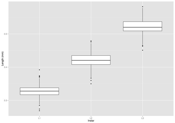 Box plot graph of lengths of all three instars (L1, L2 and L3) of the S. watsoni larvae.