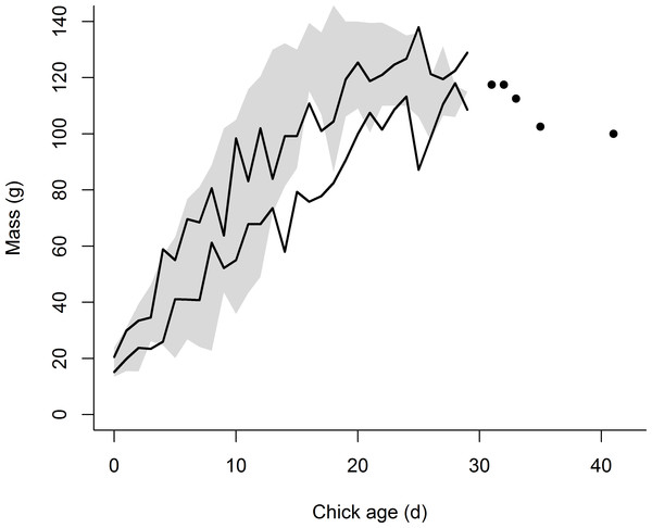 Growth in mass of the eight chicks exhibiting premature feather loss [PFL] (black lines = 95% confidence intervals) superimposed over the range of mass development for normal chicks in 2014 (n = 159 chicks, grey shading = area between 95% confidence intervals).