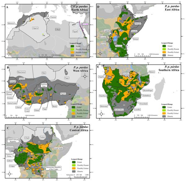 Leopard range across Africa.