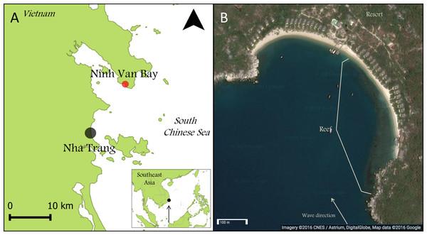 Maps of Nha Trang, Ninh Van Bay and study site.