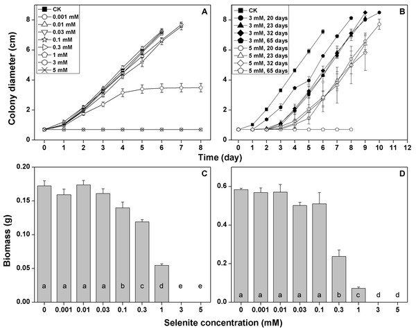 Growth responses of F. velutipes to 0–5 mM selenite in solid cultivation (A and B) static cultivation (C) and shaking cultivation (D).