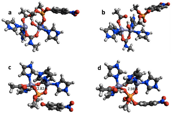 B3LYP/6-31G(d,p) and PM6 optimized structure of the reactant (A) and (B), respectively in the PTE mechanism. B3LYP/6-31G(d,p) structure of the second transition state (C) and PM6 optimized structure of a minimum that is very similar to this transition state (D).