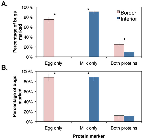 Mean (±SEM) percentage of H. halys adults per sampling site marked positive with egg white, milk, or both protein marker solutions compared from between orchard border and interior with an ANOVA for (A) female and (B) male bugs.