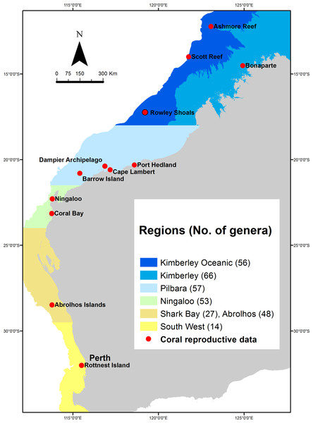 Regions in which the composition of coral reefs and the proposed patterns of coral reproduction differ most significantly across Western Australia.