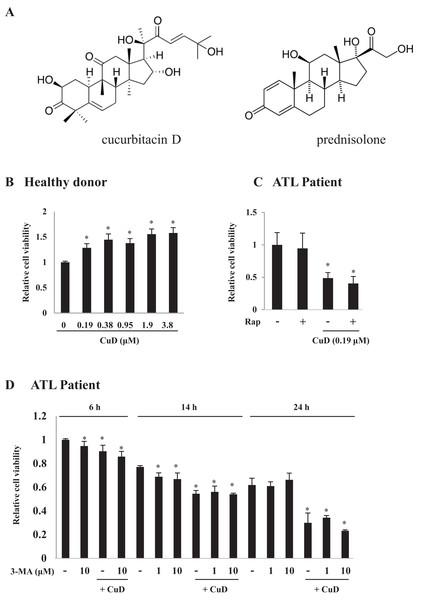 CuD induces primary ATL patient cell death.
