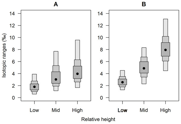Separate (A) carbon and (B) nitrogen isotopic variation of E. peruviana individuals from different shore heights.