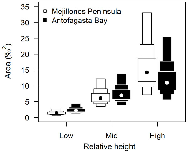 Comparison of isotopic niche widths (SEA.B) of E. peruviana individuals, grouped by relative height on shore, over Antofagasta Bay (black boxes) and Mejillones Peninsula (white boxes).