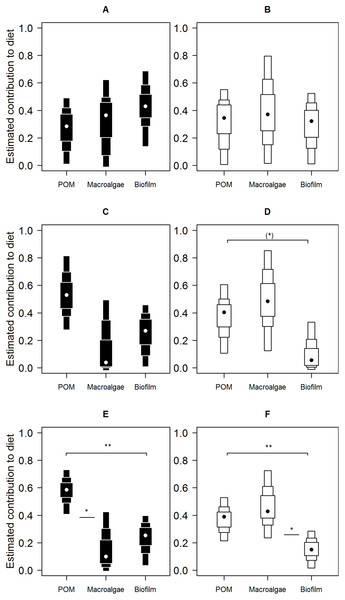 Contributions of putative resources to E. peruviana diet at high (A and B), middle (C and D) and low (E and F) shore heights.