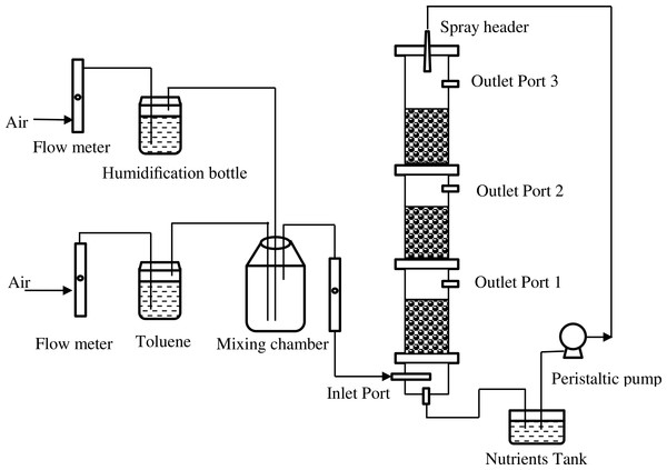 Schematic diagram of the biofilter system.