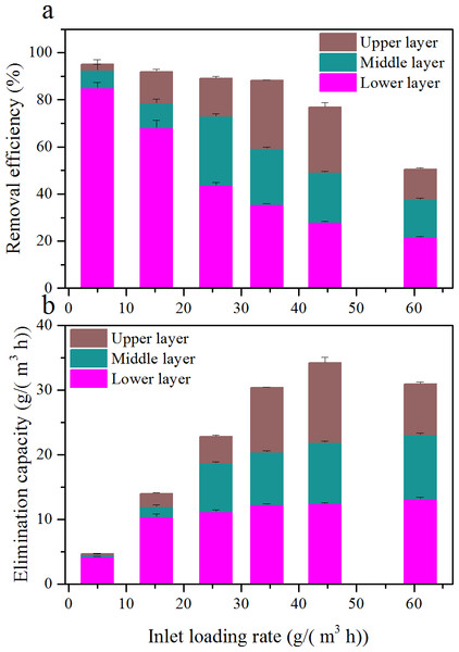 Comparison of removal efficiency (A) and elimination capacity (B) among the three layers at various inlet loading rate.