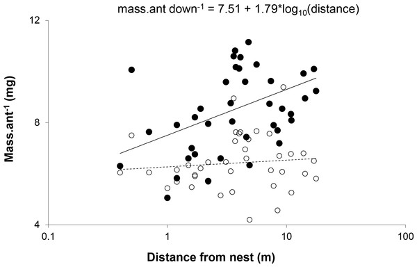 Mean mass per ant walking down (●) and up (○) each of the trees plotted against distance from the nest.