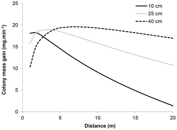 Model of the relationship between the mass of honeydew gained by the colony per minute and the distance of the tree from the nest at three different tree basal diameters (BD = 10, 25 and 40 cm).