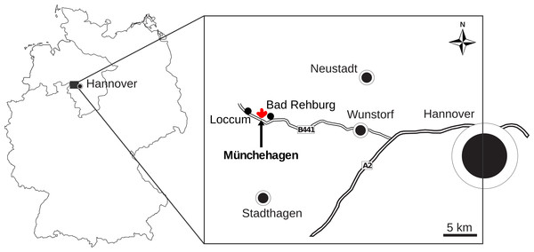 Map showing the location of Münchehagen in Germany.