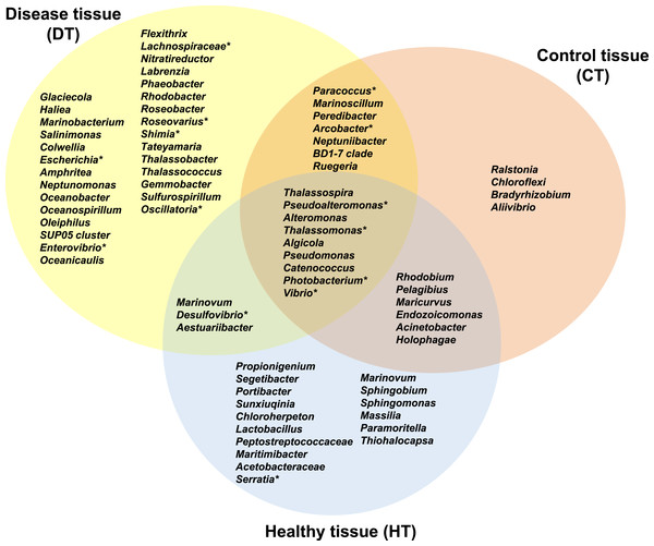 Venn diagram of bacterial genera showing their distributions in PorBBD-infected tissues (DT), healthy tissues (HT) and control tissue (CT).