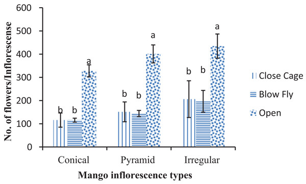 Effect of different pollination methods on the different types of mango flowers.