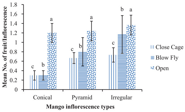 Effect of different pollination methods on the number of fruits at marble stage.