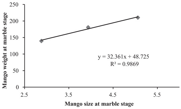 Correlation between mango fruit size and weight at marble stage.