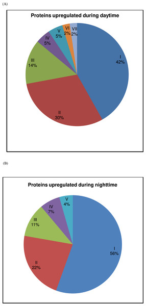 Contribution of protein groups over the 24-h period.