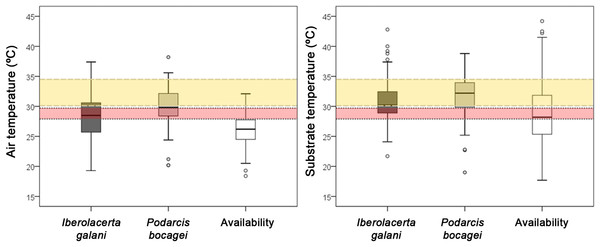 Comparison of the environmental temperatures of the selected microhabitats of both species and the mean availability of the habitat.