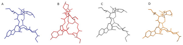 Most probable explicitly solvated α-amantin conformers.