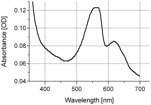 Absorbance spectrum for associated phycobiliproteins.