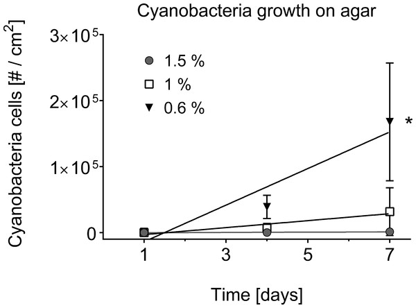 Cyanobacterial growth on various agar concentrations.