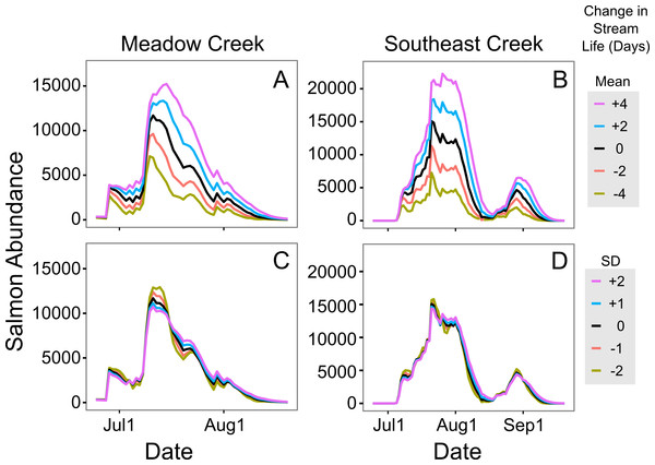Sensitivity of in-stream salmon abundance estimates to changes in stream life.