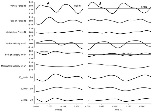 Ground reaction forces, COM velocities, and COM kinetics during a stride cycle for (A) a Short-tailed Shrew (mass = 27.0 g; mean forward velocity = 0.45 m s−1) and (B) a Meadow Vole (23.8 g; 0.41 m s−1).