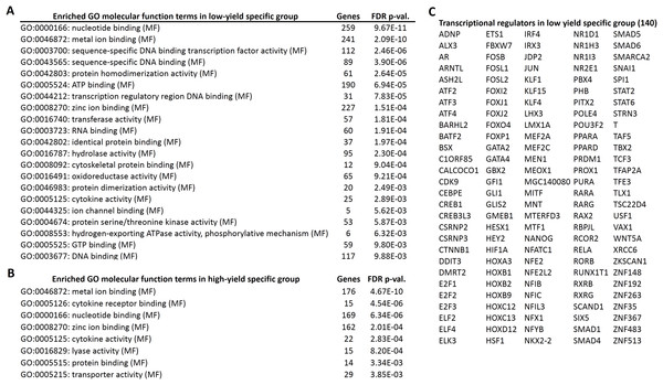 Gene ontology enrichment analysis of high and low specific gene candidates.