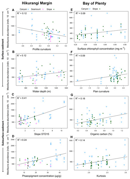 Selection of statistically significant (P < 0.05) correlations between environmental variables and meiofaunal abundance at different sediment layers in the Hikurangi Margin and Bay of Plenty regions.