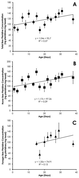 Linear relationship between bee age and pteridine concentration for all bees (A), nurse bees (B), and forager bees (C) from colonies with normal demography.