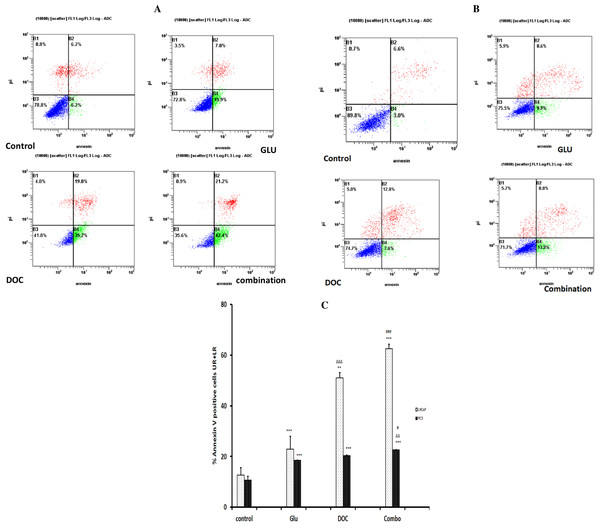 (A) AnnexinV-FITC apoptosis assay for LNCaP cells after treatment for 72 h.