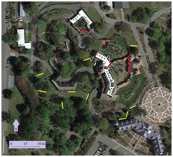 Location of windows surveyed (red) and mist nets (yellow) at the Virginia Zoo.