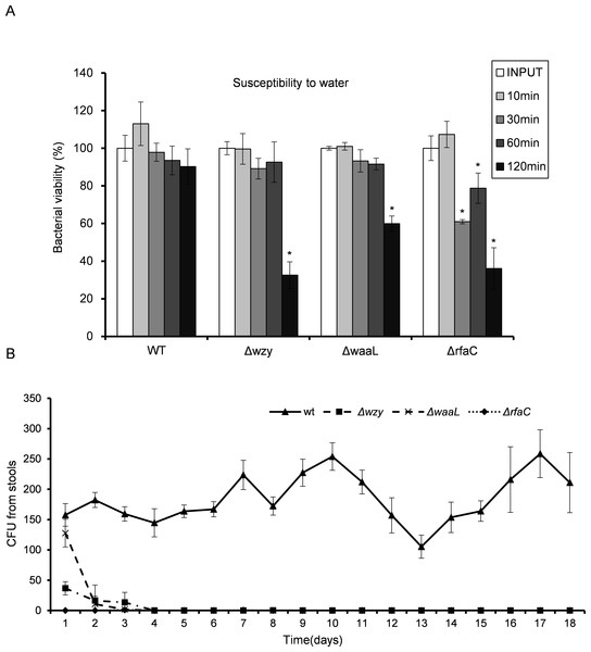 In vitro susceptibility to water (A) and in vivo colonization ability (B) of Shigella flexneri LPS mutants in comparison with the parental Sf301 strain.