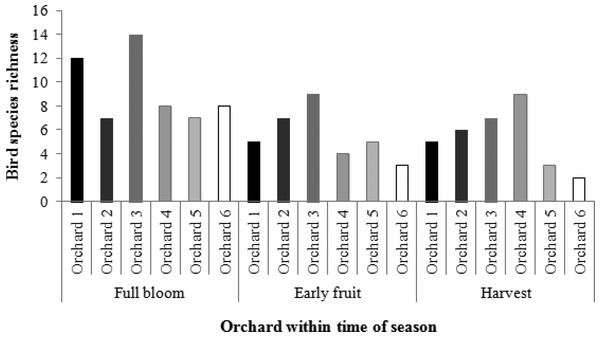 Bird species richness in each orchard at key times of the growing season.